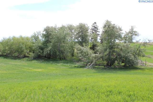 TBD Butte Farm Road, Oakesdale, WA 99158 (MLS #253904) :: Columbia Basin Home Group
