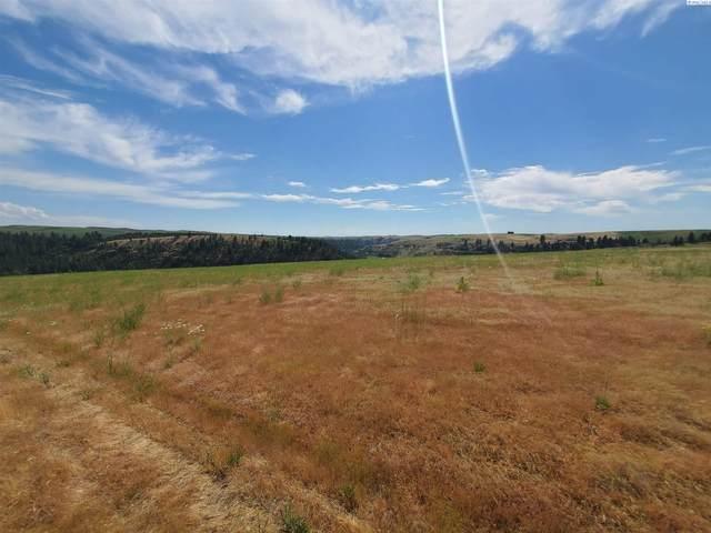 Lot 26 Red Tail Ridge, Colfax, WA 99111 (MLS #254593) :: Cramer Real Estate Group