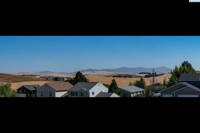 450 NW Terreview Dr, Pullman, WA 99163 (MLS #254997) :: Tri-Cities Life