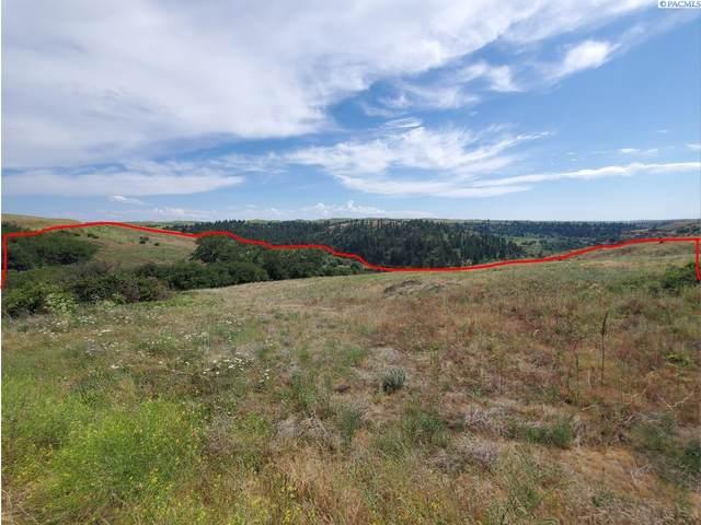 Lot 21 Red Tail Ridge, Colfax, WA 99111 (MLS #256040) :: Beasley Realty