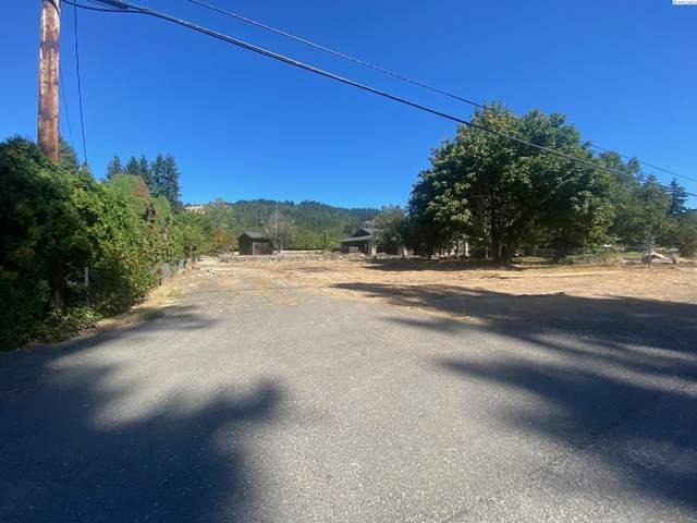820 NW Loop Road, White Salmon, WA 98672 (MLS #256608) :: Matson Real Estate Co.