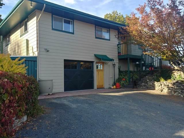 718 S Scenicview Drive, Colfax, WA 99111 (MLS #256910) :: Tri-Cities Life