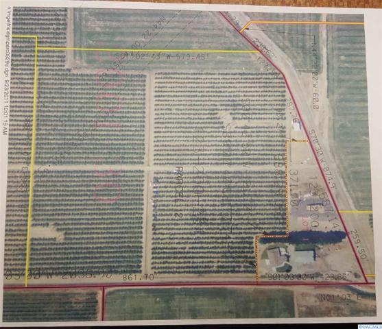 nna Elm Road, Pasco, WA 99352 (MLS #226303) :: Premier Solutions Realty
