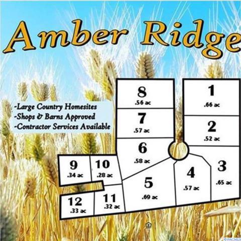 106 Amber Ridge Rd.  (Lot 6), Palouse, WA 99161 (MLS #229457) :: Dallas Green Team