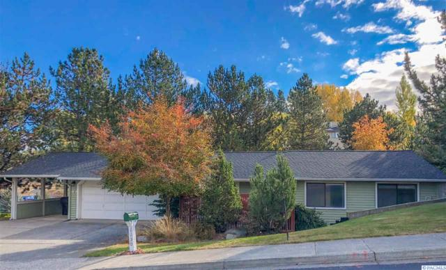1130 SW Wadleigh Dr., Pullman, WA 99163 (MLS #233131) :: Premier Solutions Realty