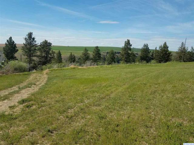 TBD Hauser Ave, Colfax, WA 99111 (MLS #237978) :: The Lalka Group
