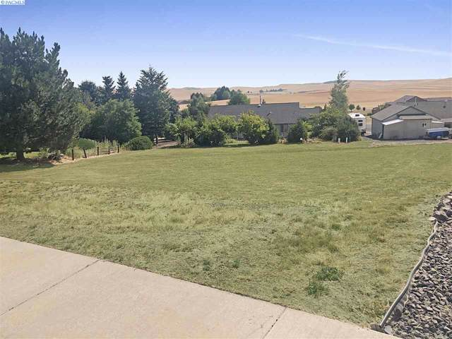 1115 Line Court, Colton, WA 99113 (MLS #239554) :: Beasley Realty