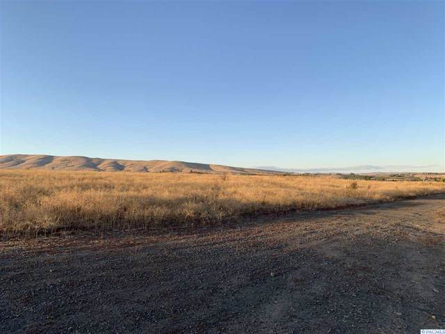 NNA Douglas Rd, Yakima, WA 98908 (MLS #241160) :: Premier Solutions Realty