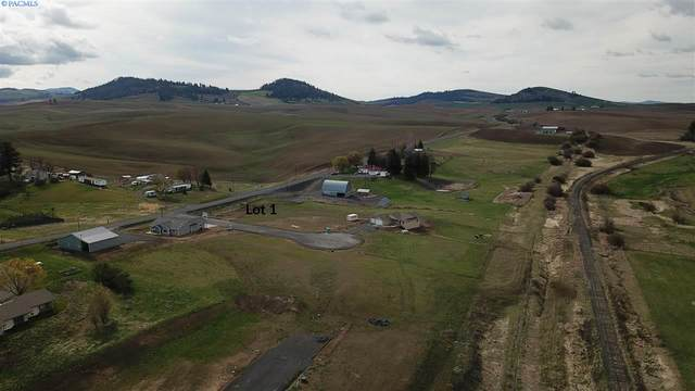 101 Amber Ridge Rd., Palouse, WA 99161 (MLS #245142) :: The Phipps Team