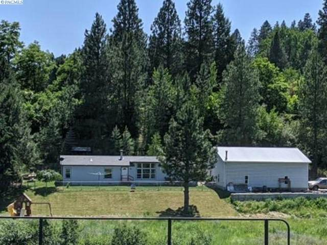 110 S River Road, Palouse, WA 99161 (MLS #246811) :: The Phipps Team