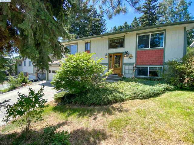 1295 SE Earthtone, Pullman, WA 99163 (MLS #247392) :: Cramer Real Estate Group