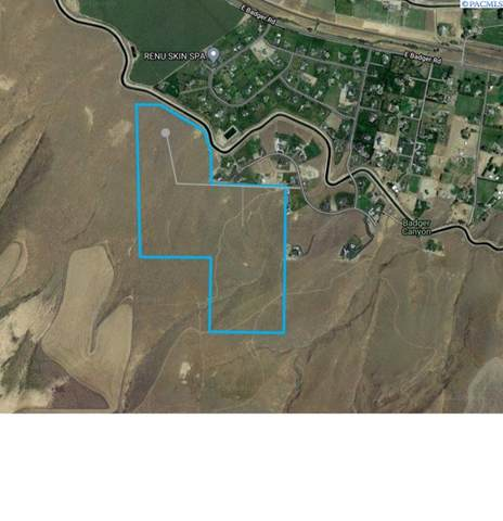 TBD Homestead Rd   (Lot 14), Kennewick, WA 99338 (MLS #248367) :: Cramer Real Estate Group