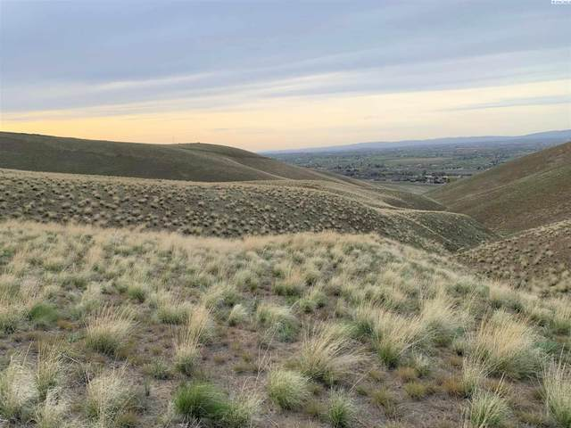 24704 Kelandren Lot 3, Prosser, WA 99350 (MLS #252701) :: Matson Real Estate Co.