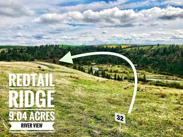 Lot 32 Red Tail Ridge, Colfax, WA 99111 (MLS #252985) :: Premier Solutions Realty