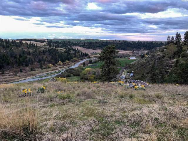Lot 15 Red Tail Ridge, Colfax, WA 99111 (MLS #253158) :: Premier Solutions Realty