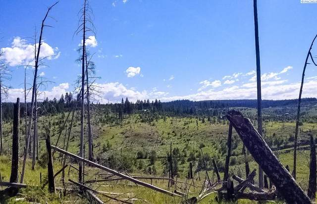 TBD Dry Pataha Creek, Pomeroy, WA 99347 (MLS #255488) :: Columbia Basin Home Group