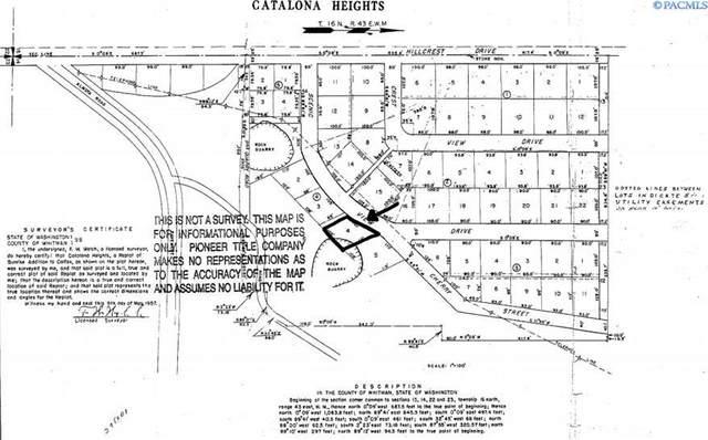 TBD Scenic View Dr (Lot 4), Colfax, WA 99111 (MLS #256214) :: Tri-Cities Life