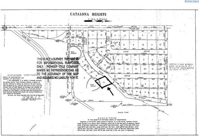TBD Scenic View Dr (Lot 5), Colfax, WA 99111 (MLS #256215) :: Tri-Cities Life
