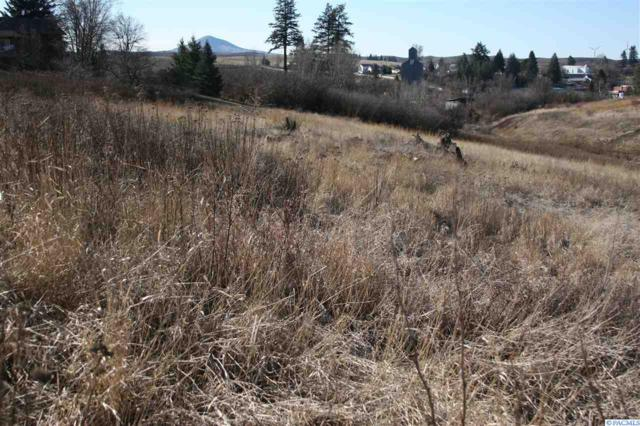 TBD Roberts, Oakesdale, WA 99158 (MLS #226385) :: The Lalka Group