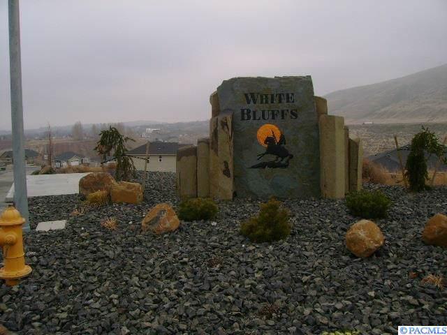 Lot 21 Phase 4 White Bluffs, Richland, WA 99352 (MLS #241873) :: Community Real Estate Group