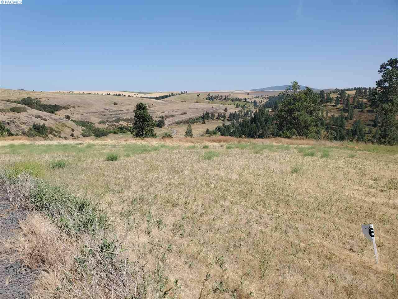 Lot 6 Red Tail Ridge - Photo 1