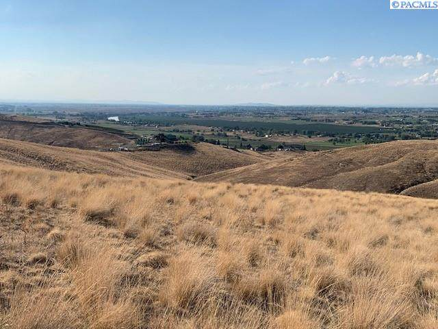 UNDETERMINED Richards Rd, Prosser, WA 99350 (MLS #257117) :: Results Realty Group