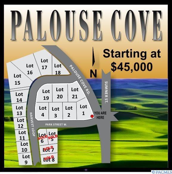 108 Park Street, Palouse, WA 99161 (MLS #224650) :: Dallas Green Team