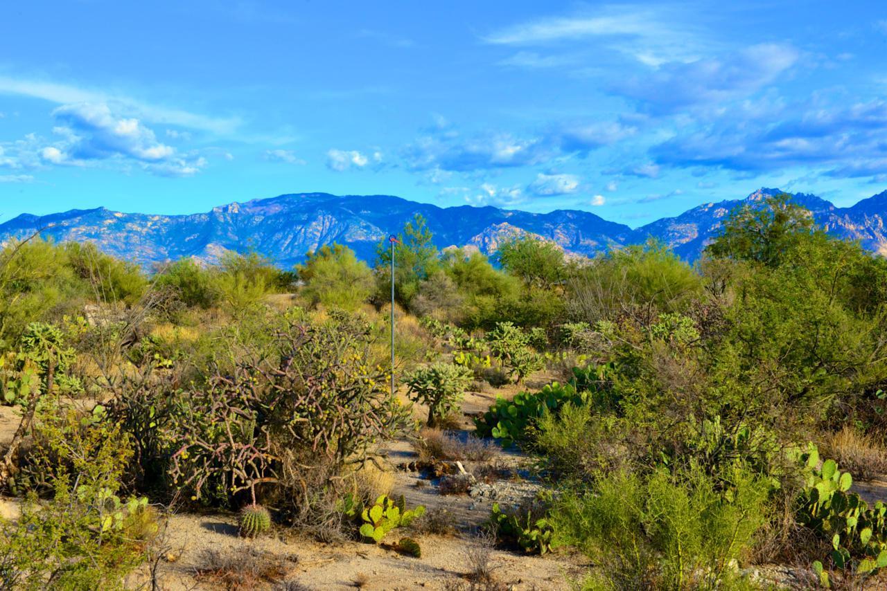 899 Tortolita Mountain Circle - Photo 1