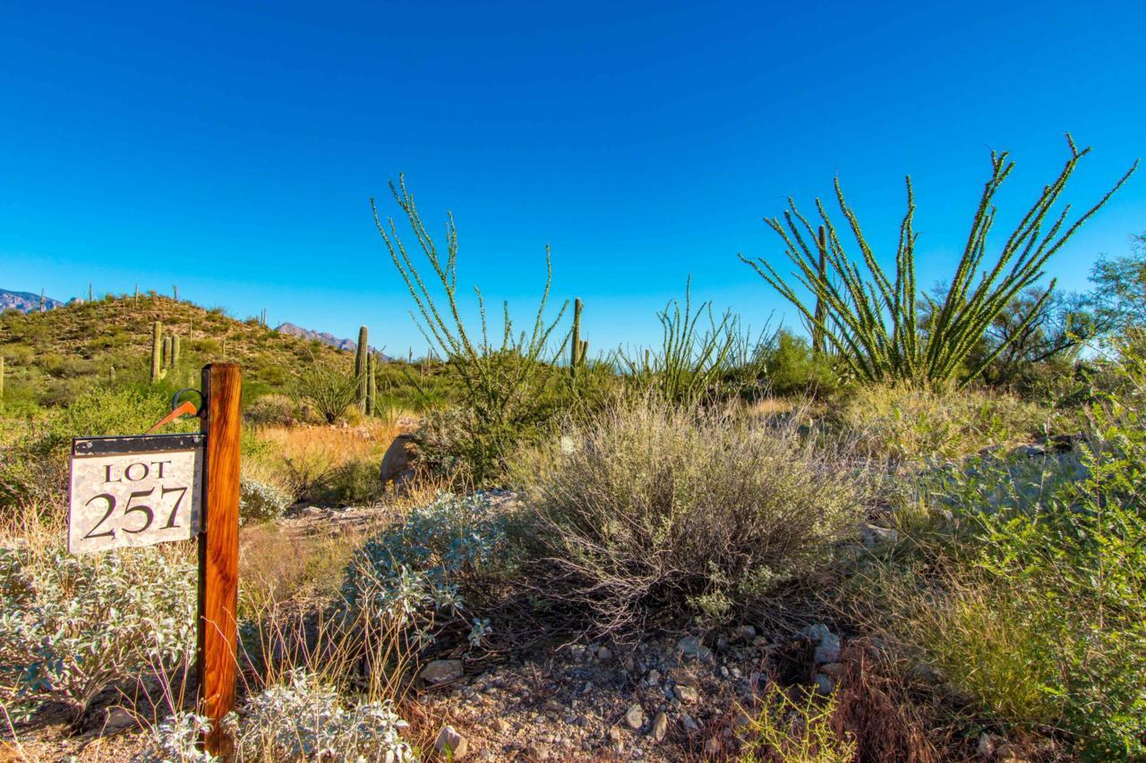2045 Windy Mesa Drive - Photo 1