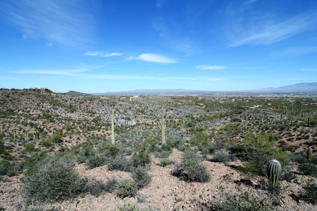 0 El Adobe Ranch Road - Photo 1