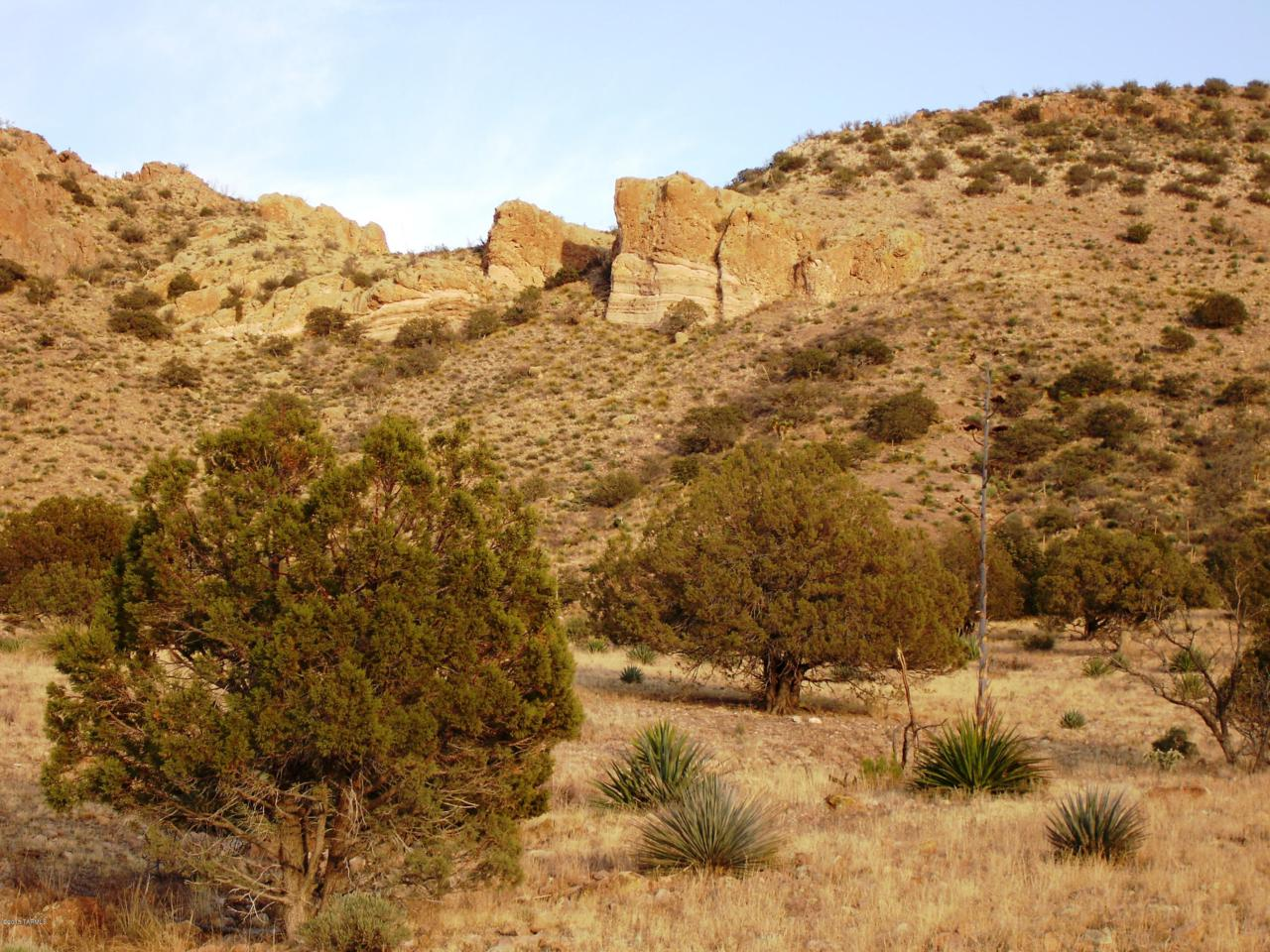 Pinery Canyon Road - Photo 1