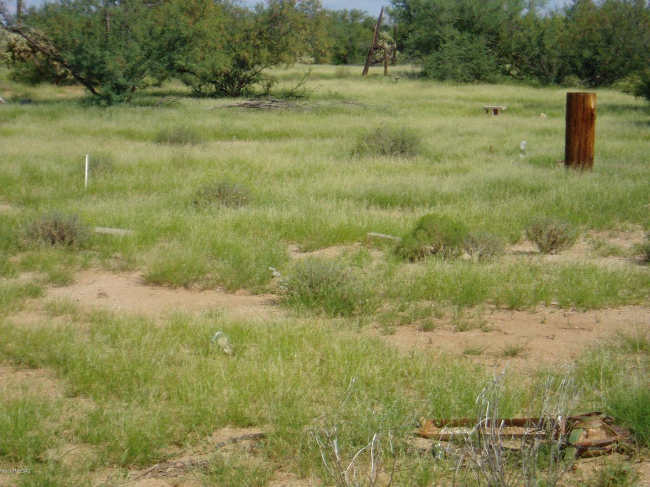 16381 Cowboy Place - Photo 1