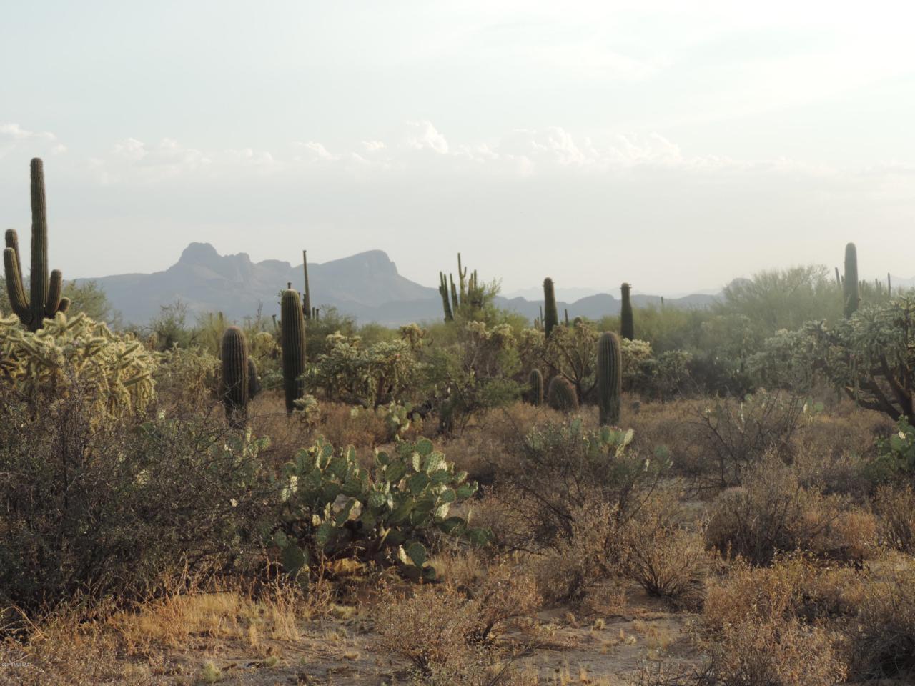 TBD Camino De Oeste - Photo 1