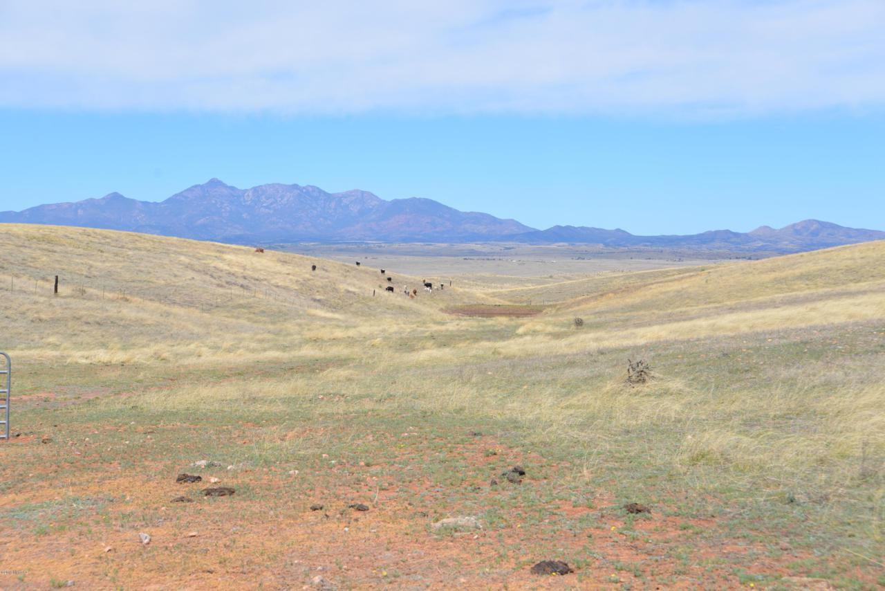 TBD Lone Mesquite - Photo 1