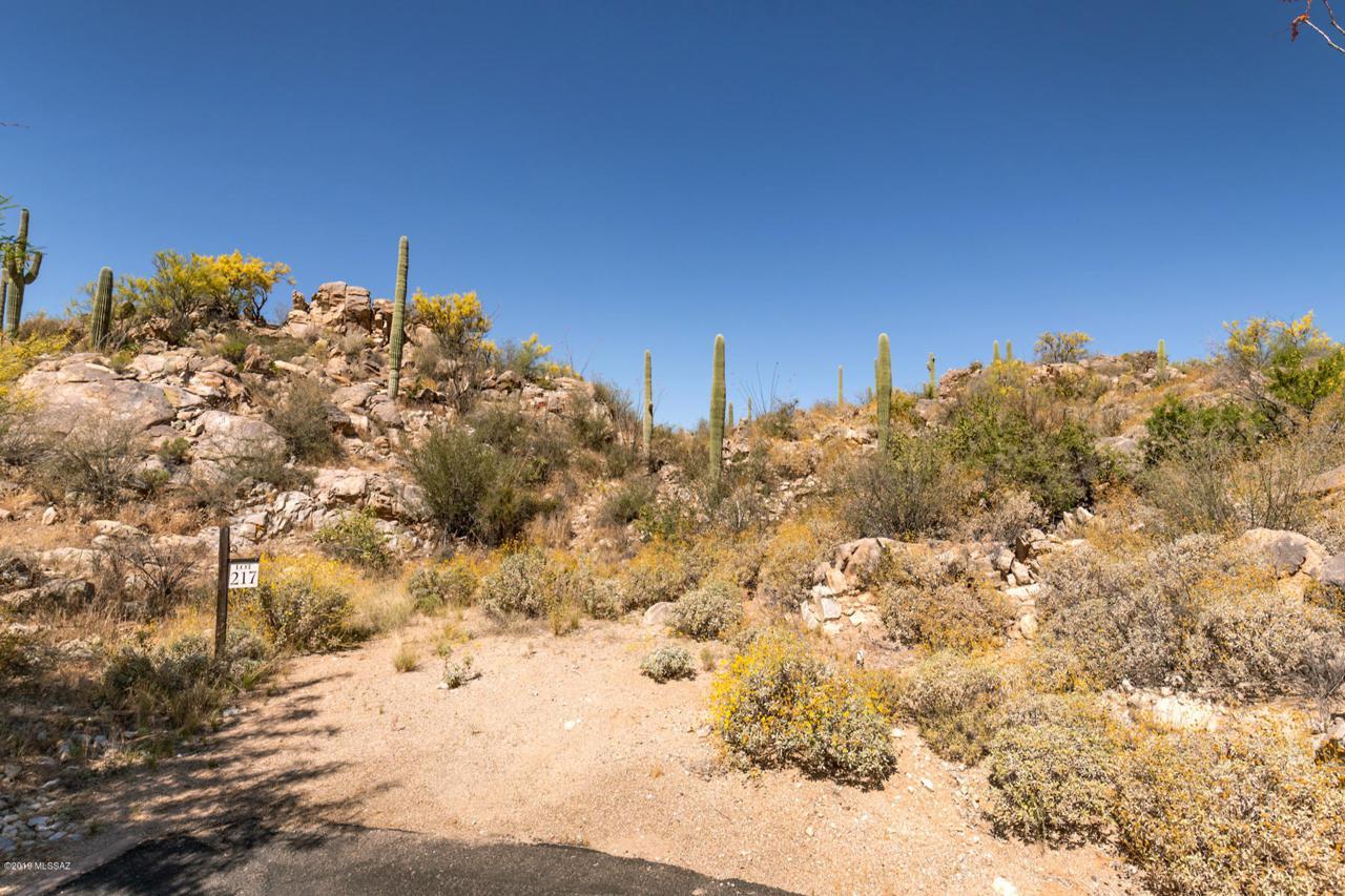 14541 Rocky Highlands Drive - Photo 1