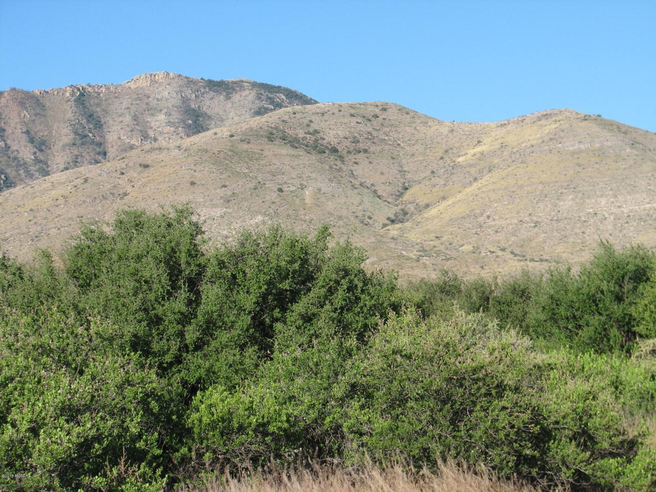 40 Acres Mesquite Road - Photo 1