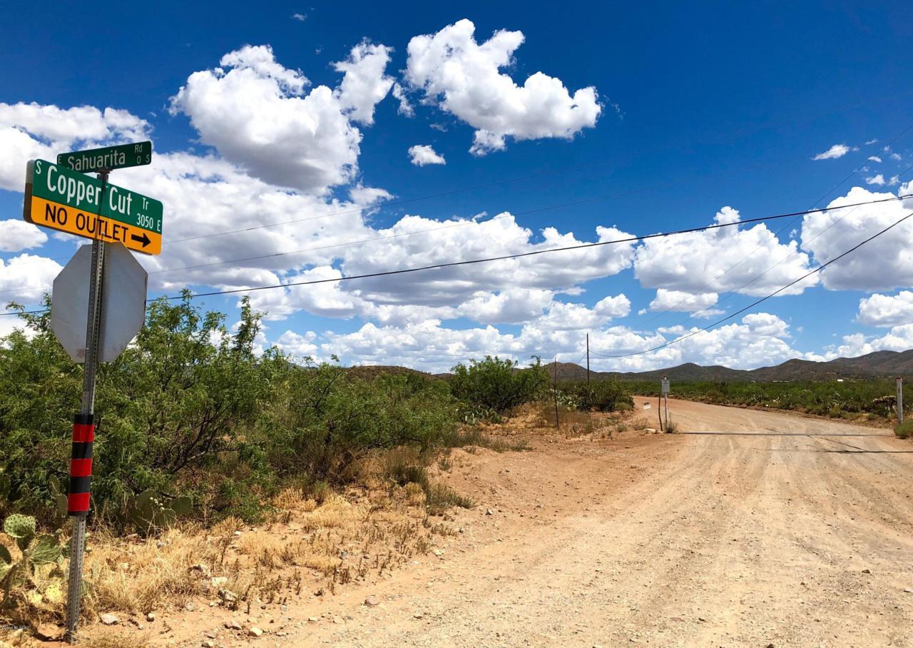 17765 Copper Cut Trail - Photo 1