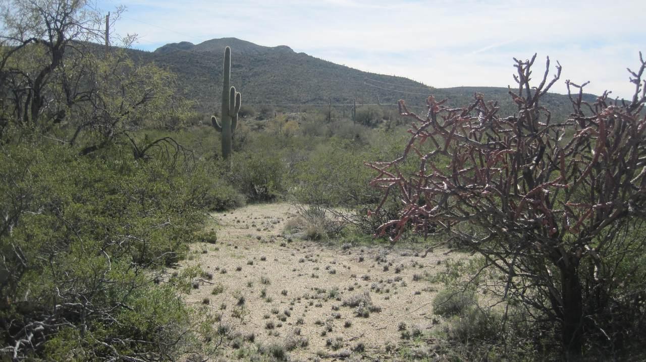 000 Desert Dove Road - Photo 1