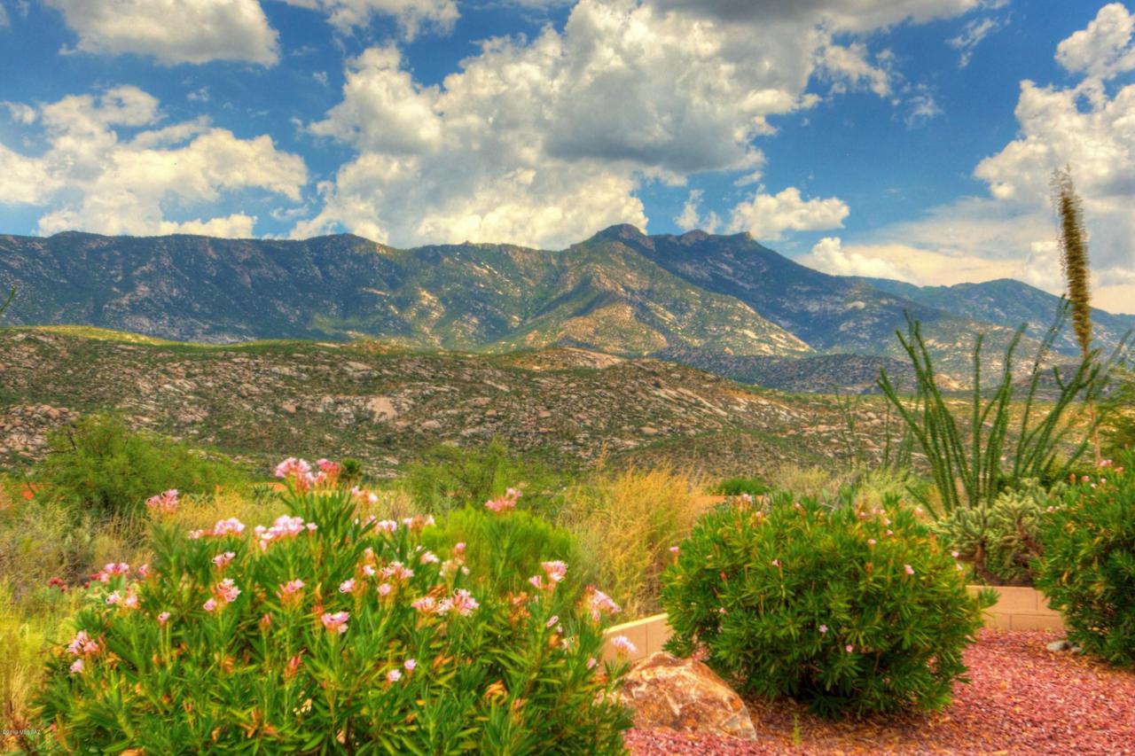37361 Desert Sun Drive - Photo 1