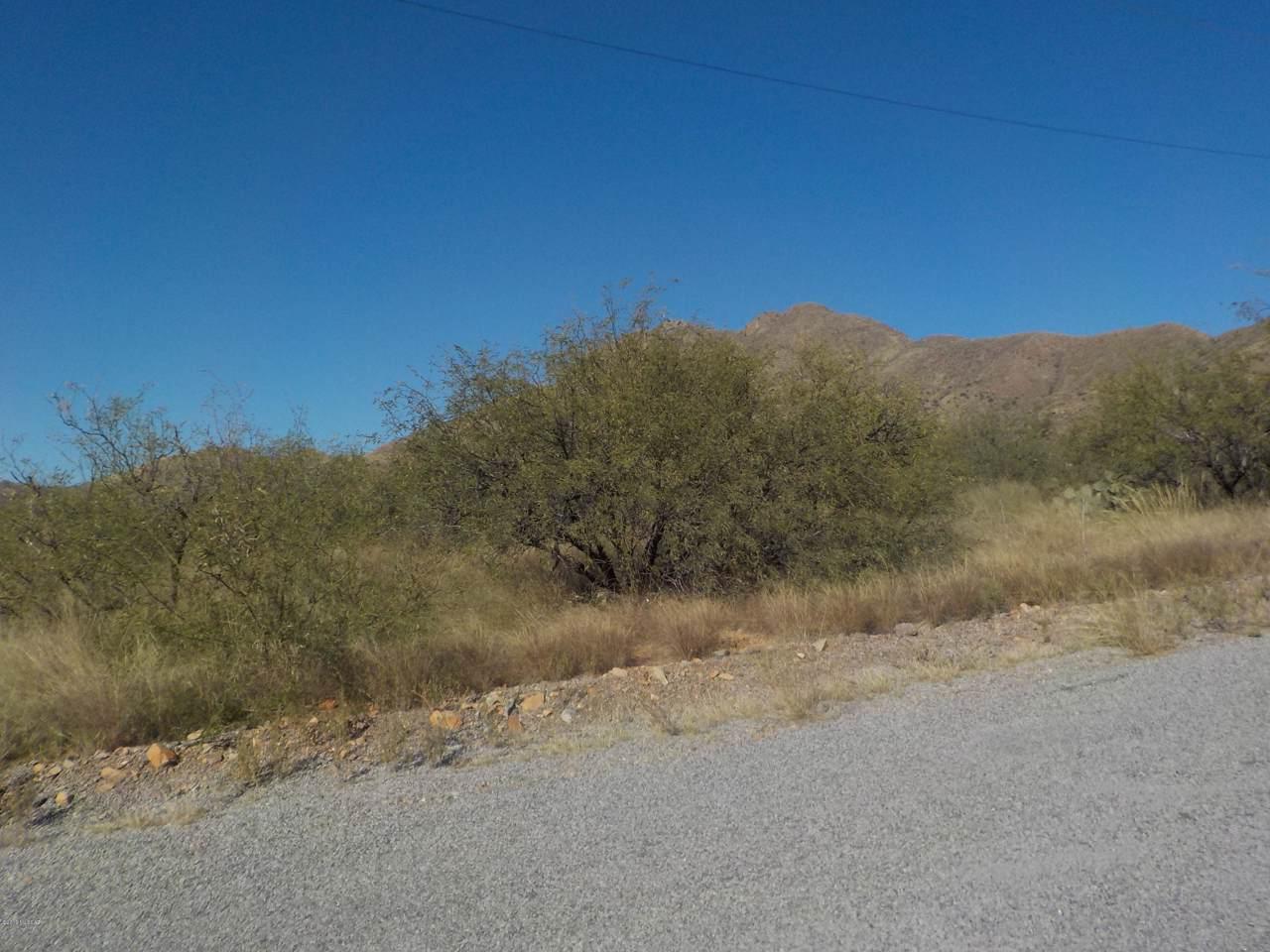316 Camino Canoa - Photo 1