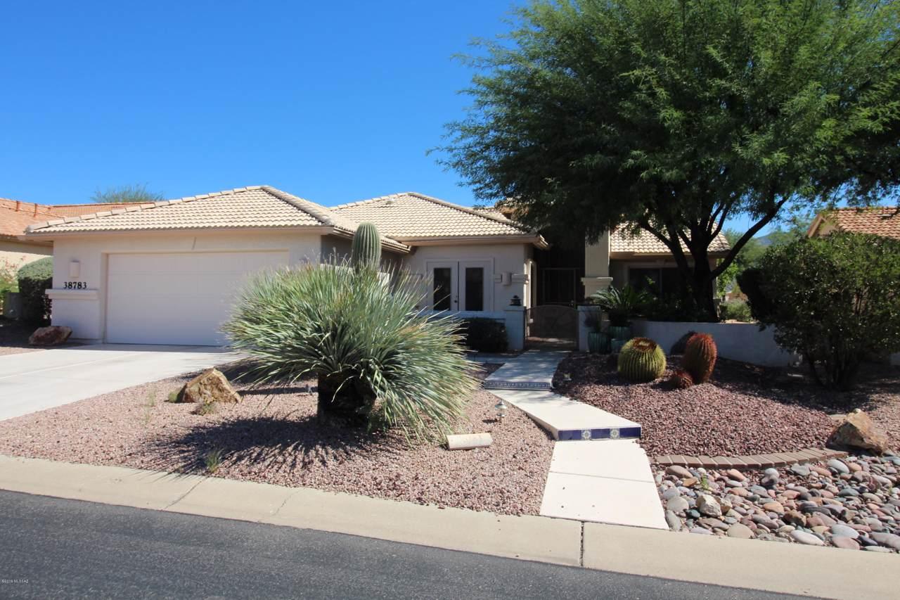 38783 Desert Bluff Drive - Photo 1