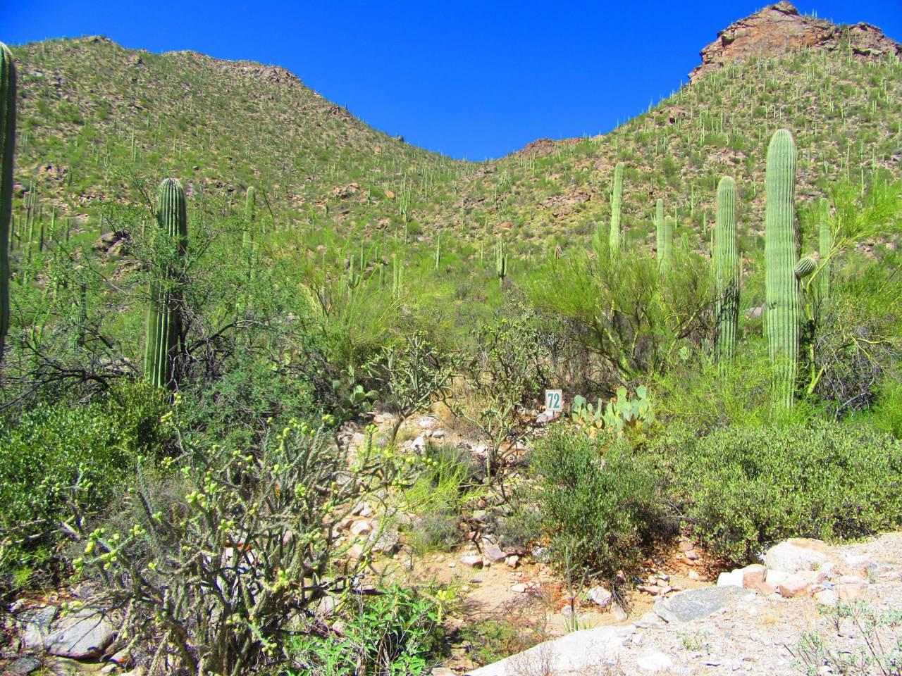 4550 Cush Canyon Loop - Photo 1