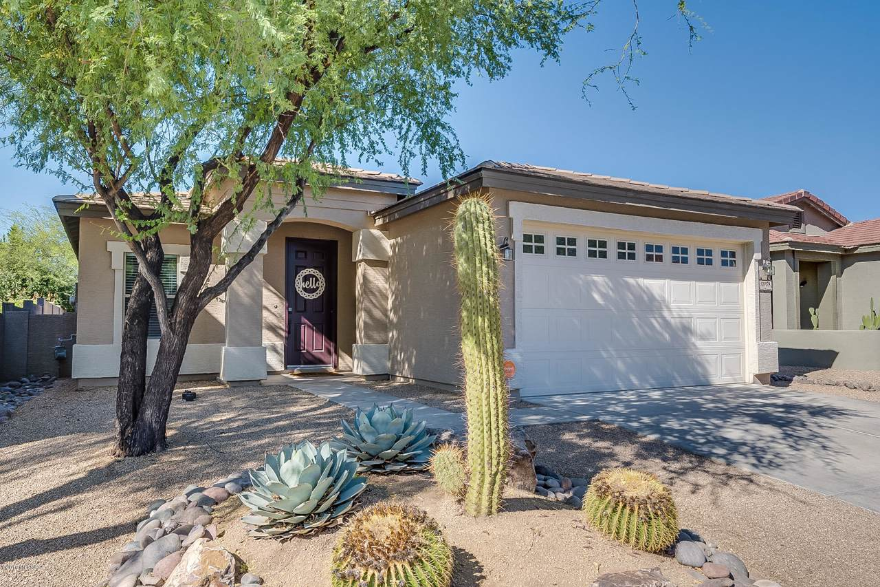 12959 Yellow Orchid Drive - Photo 1