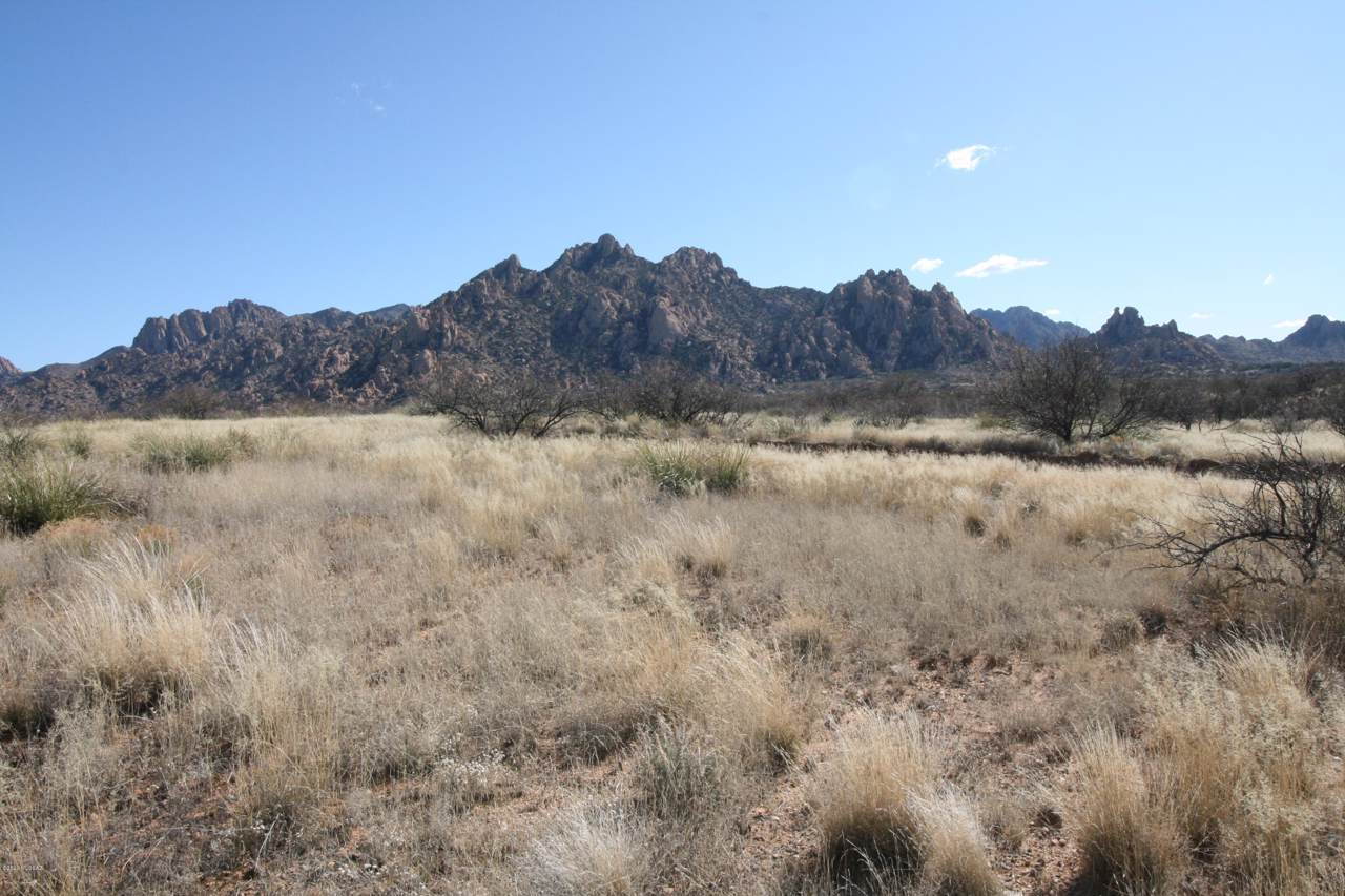 Lot 201 East Horse Ranch Road - Photo 1