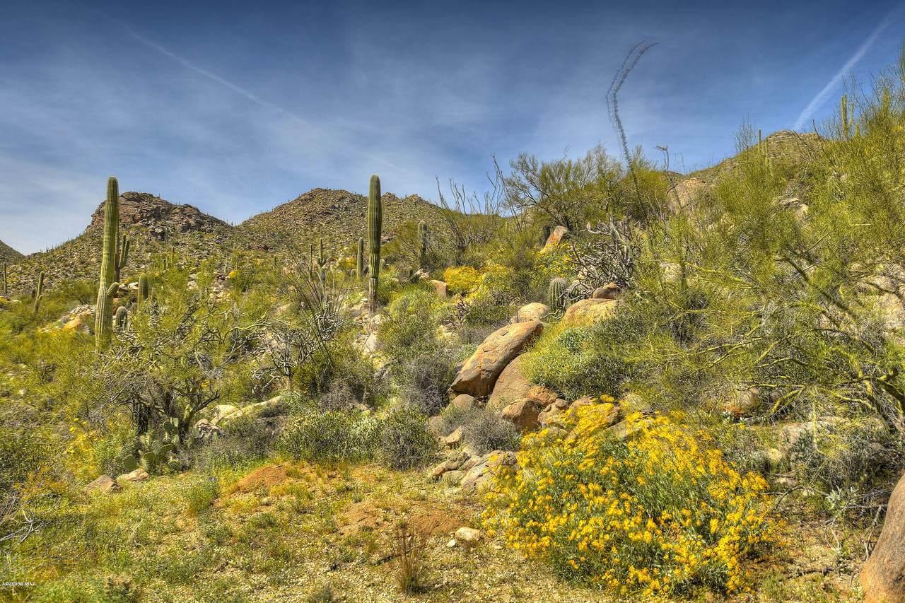 14891 Sonora Vista Canyon Place - Photo 1