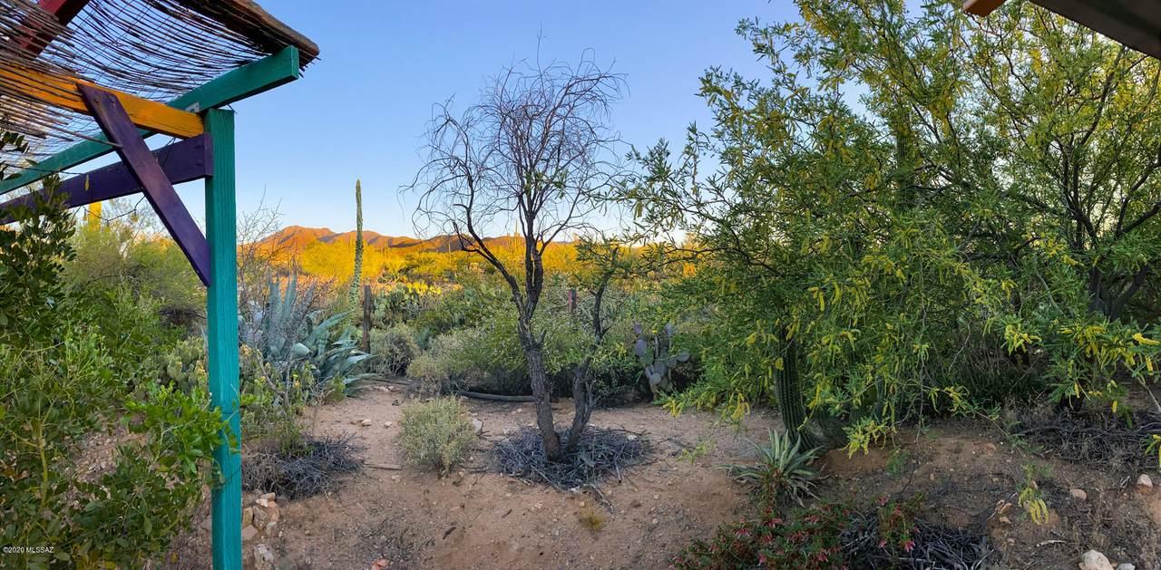 10021 Horse Mesa Trail - Photo 1