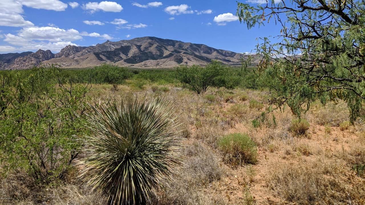 40 Acres On Panorama - Photo 1