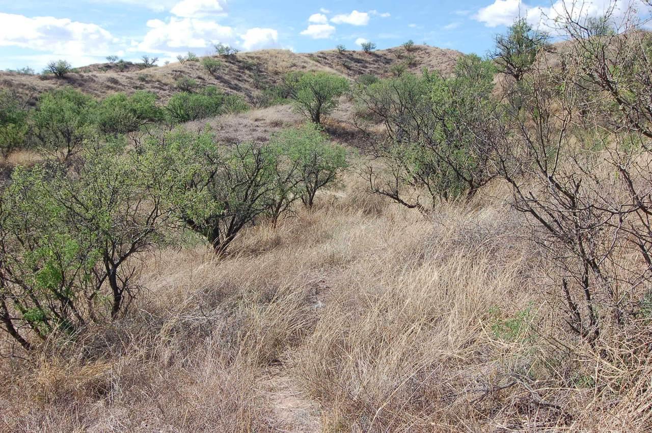Gray Hawk Trail - Photo 1