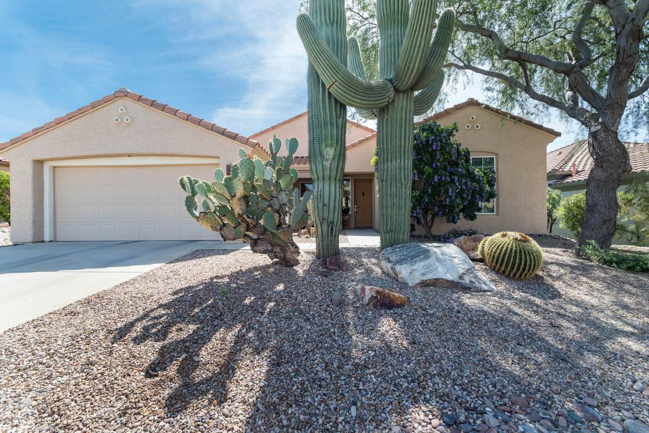 5095 Thistlepoppy Loop - Photo 1