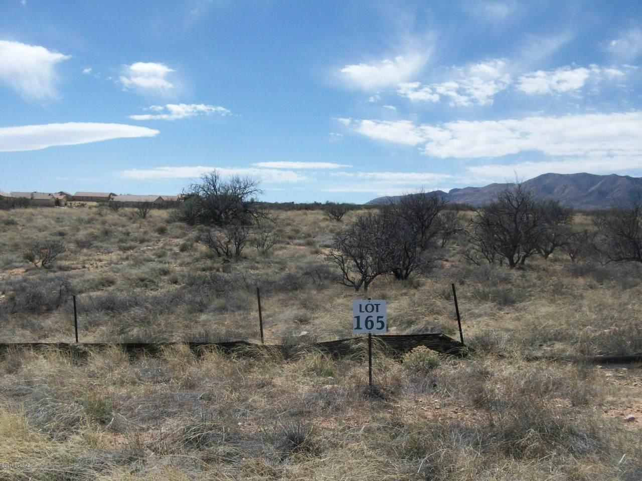 1654 Desert Oasis Court - Photo 1
